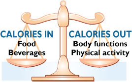 Calories in Calories Out 4